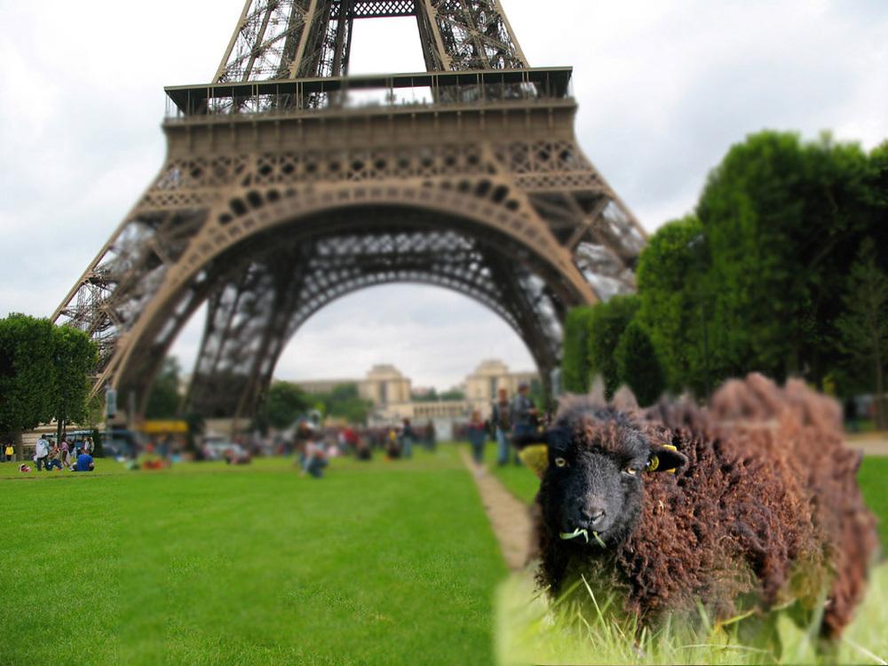 balada de um banco de jardim os azeitonas : balada de um banco de jardim os azeitonas:Jardineiros ruminantes em Paris / May 30, 2014 by clarissa morgenroth