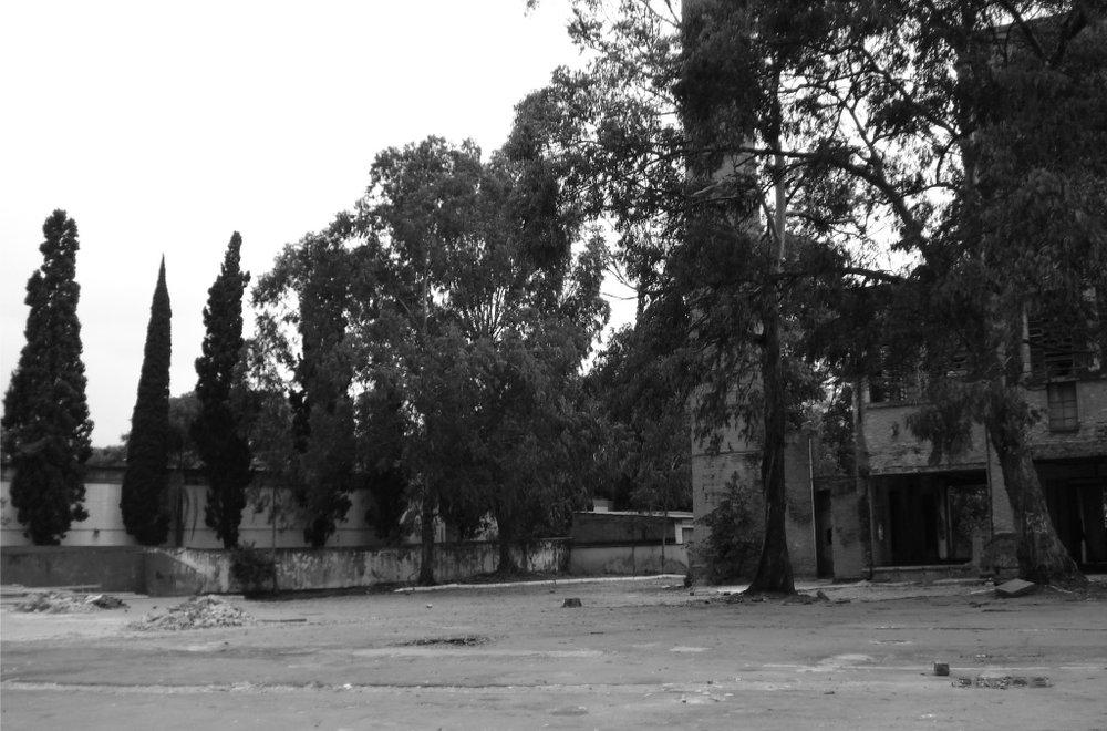 Pç VIctor Civita Before 4.jpg