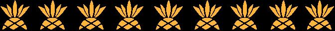 Pineapple Banner