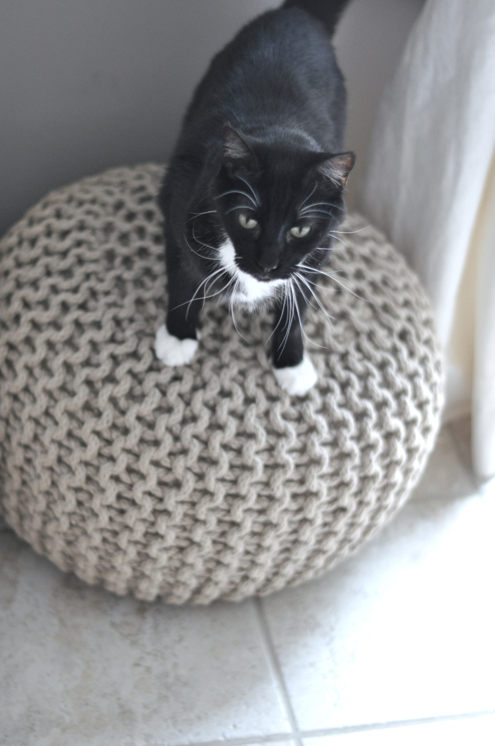 Oscar, Playing Around On The Pouf