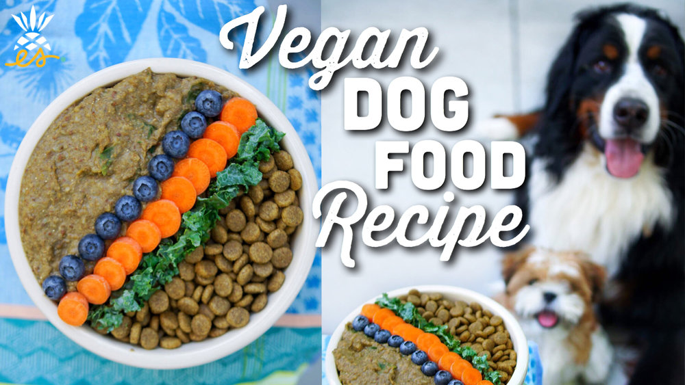 EatMoveRest Vegan Dog Food