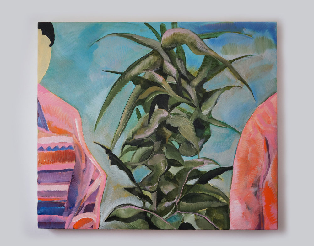 June, Plant, Sawyer, 2017, Acrylic on Canvas, 26 x 30in