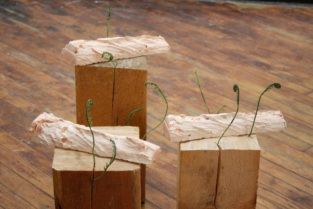 New Growth 2, 2014, cedar, resin, artificial plants, *13 x 24 x 30in