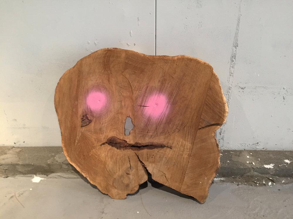 Woodlooker, 2017, Wood, Resin, Spray Paint
