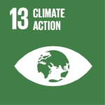 SDG 13_ Climate Action.jpg