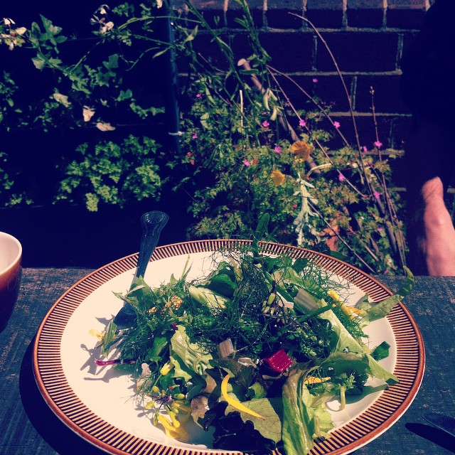 enjoying a spontaneous spring salad from friends garden on this sunny day! #eat
