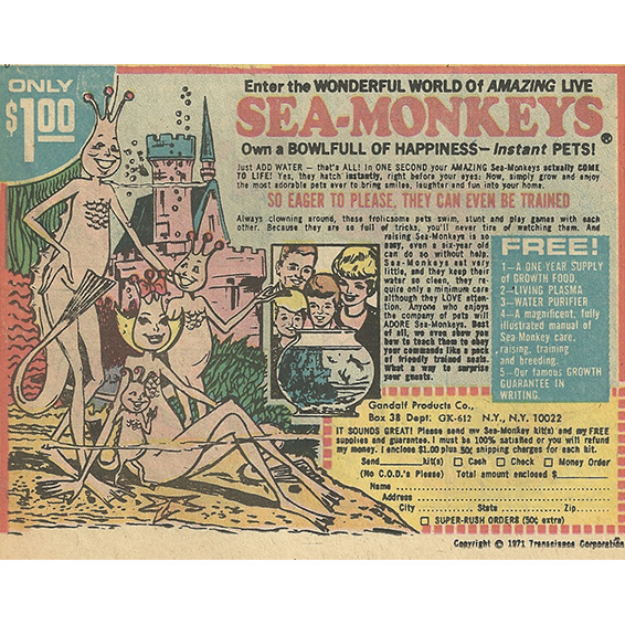 Sea-Monkeys