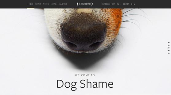 Dogshame-Horiz.jpg