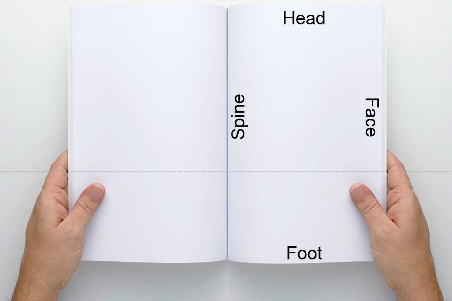bookfoothead.JPG