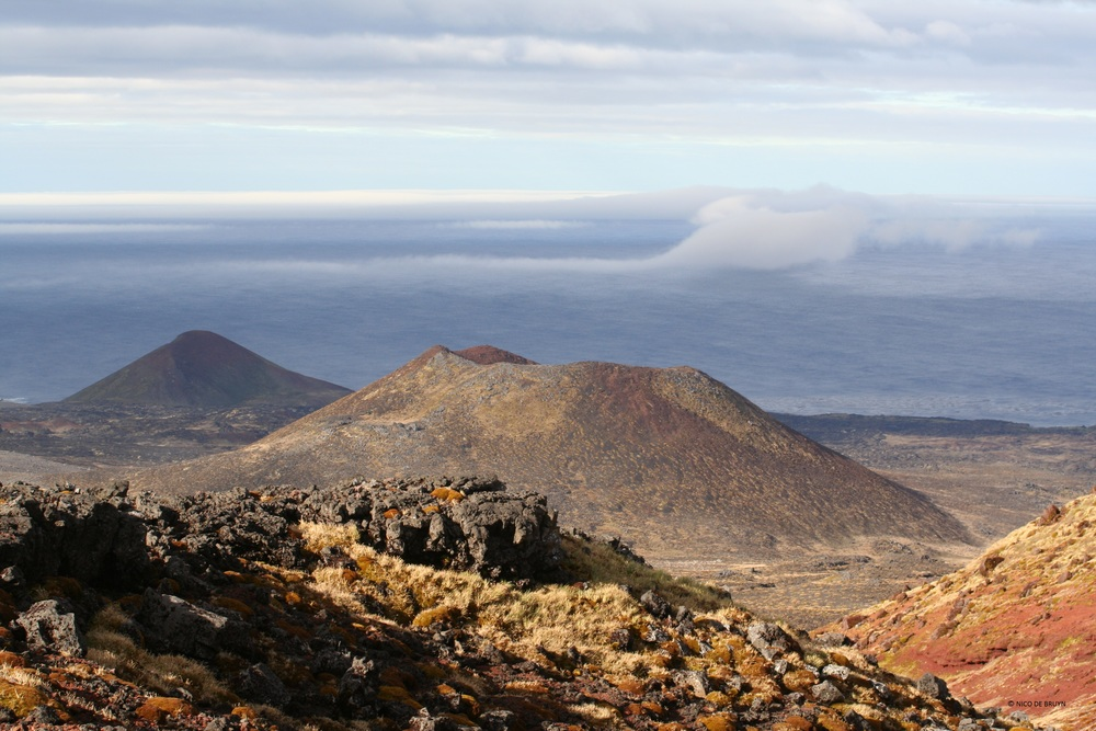 From Karookop region, looking south-east towards Arthur's & Green hills, Marion Island. Photo credit: Nico de Bruyn