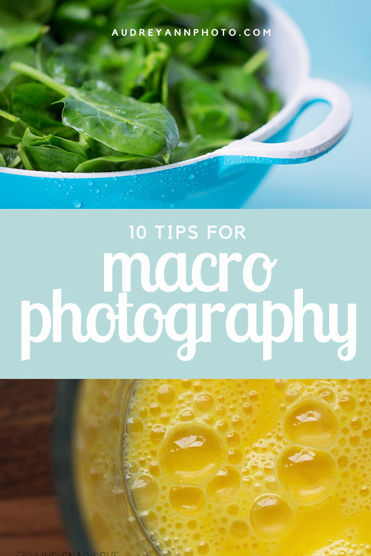 10-tips-for-macro-photography.jpg