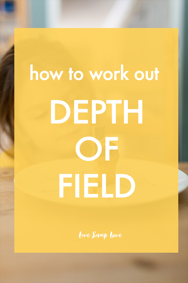 how to work out your depth of field live snap love i have been asked many times about which aperture you should use for what and whilst i always try to give guidance on that i never like to duck a question