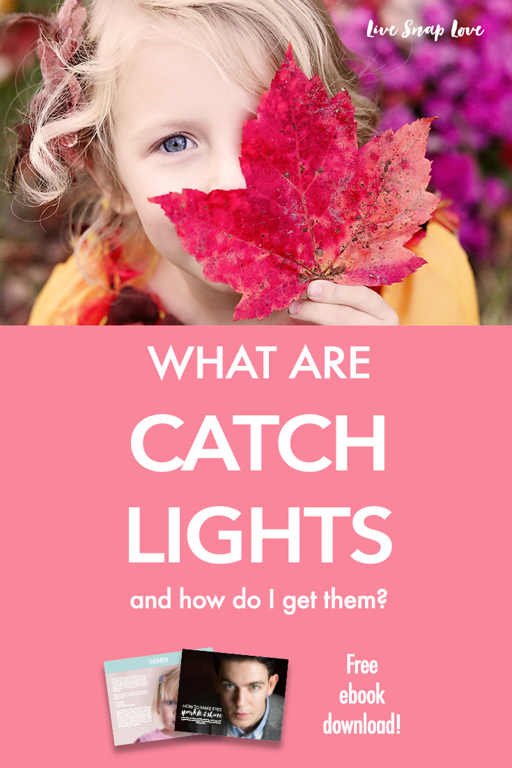 Beginner Photography Tip | Get catchlights in your subject's eyes to make them pop and sparkle! Click through to read how to get them (with free ebook!)
