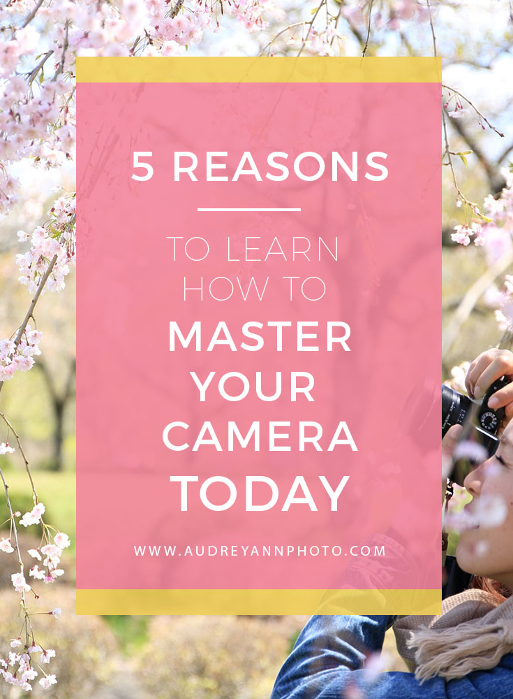 Photography Tips   Learning Photography   Beginner Photography Tips
