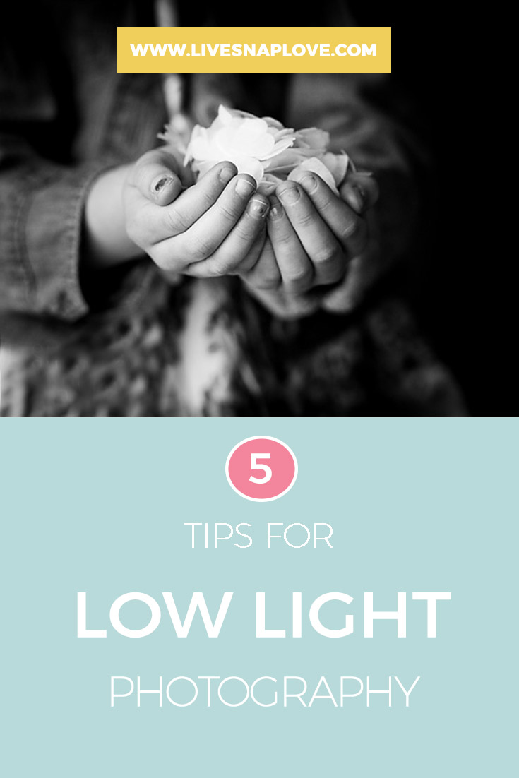 Photography Tips | Getting great images in low light can be challenging, so read on for five tips to help you get great images even when the light is low.