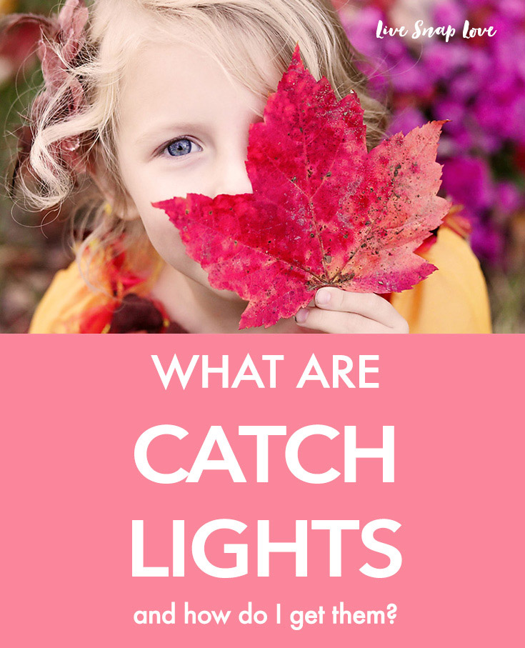Beginner Photography Tip | Get catchlights in your subject's eyes to make them pop and sparkle! Click through to read how to get them.