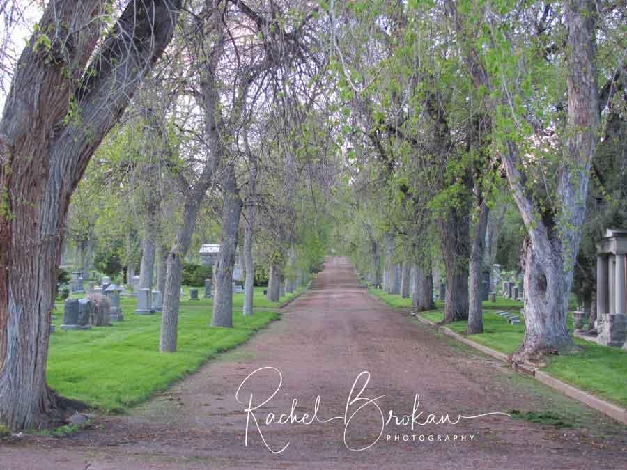 2015 - Rebekah's cemetery