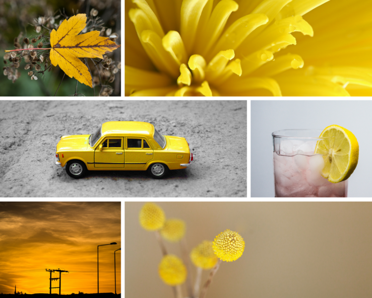 11.png12 Types of Photography Projects and Creative Exercises you can do in 2018