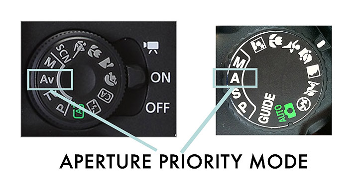 how-to-shoot-in-aperture-priority-mode-1.jpg