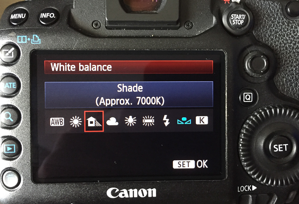 White balance settings for open shade.jpg