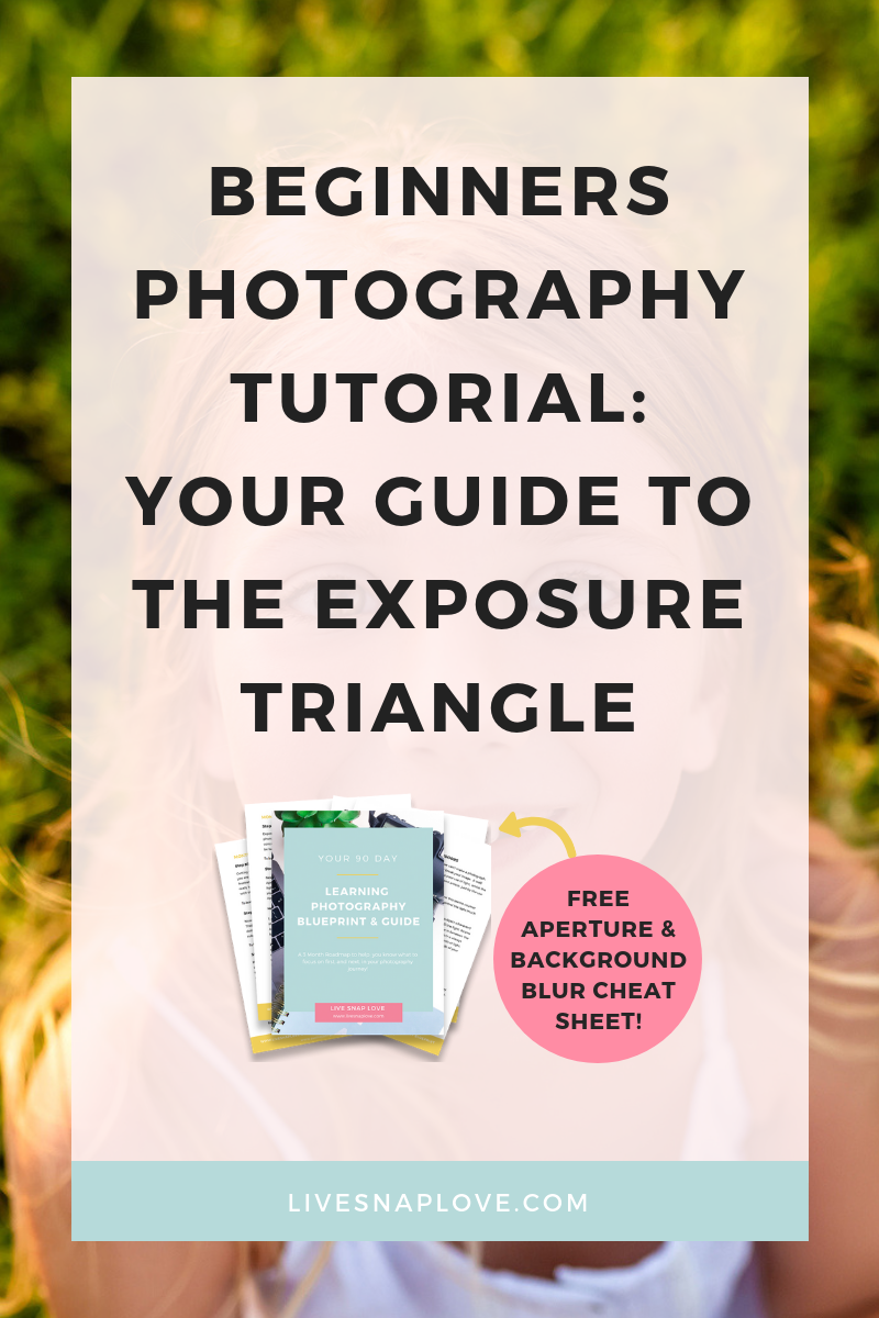 Learn about the Exposure Triangle and the elements of Exposure: ISO, Shutter Speed, and Aperture, in this easy to understand guide to the exposure triangle! | Beginner Photography Tips | Beginner Photography Tutorial