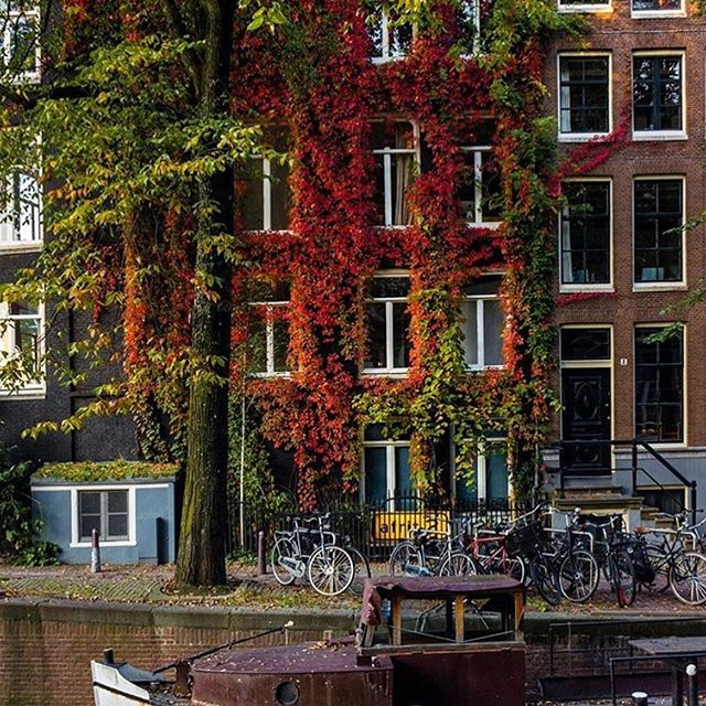 Autumn in amsterdam! One of the most beautiful cities in the world and my personal favorite. My parents had an apartment on the Singel canal when I was a kid and I remember spending hours looking out those large window waving at the people going by in boats. Thank you @nodestinations for taking me back! . . . . . #saskiadevries #saskiadevriesdesigns #travel #inspiration #world #photooftheday #beautiful #worldtravel #instagood #travelgram #love #inspo #instajewelry #instago #trip #instatraveling #travelphoto #travelbug #global #jetsetter #wanderlust #international #traveltheworld #backpacker #amsterdam #singelcanal