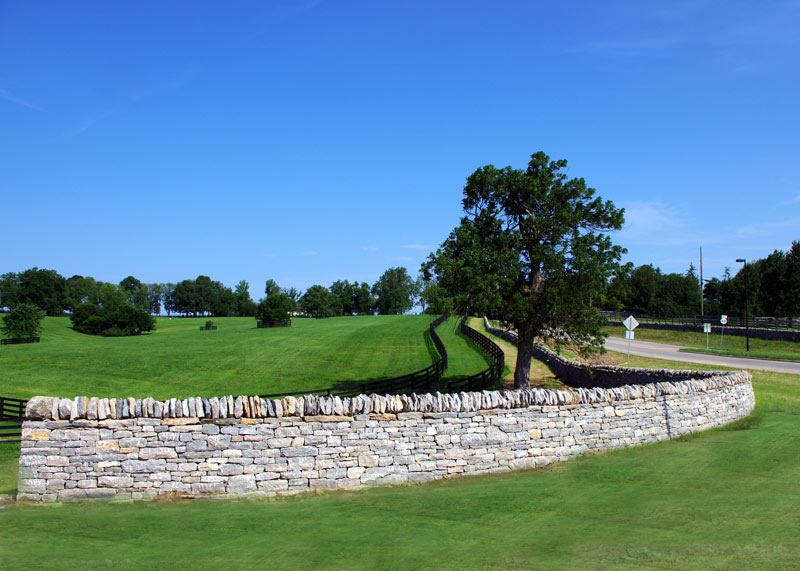 Country drives along the historical stone fences. Kentucky really is just beautiful.