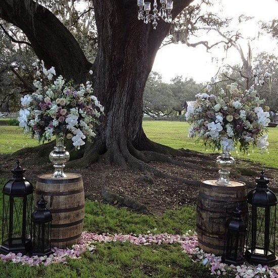 Photo credit via:  Antonia Plantation
