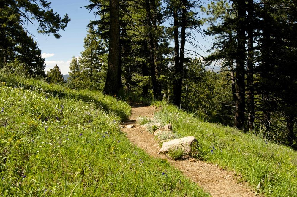 Ranger Greenman Trail Boulder