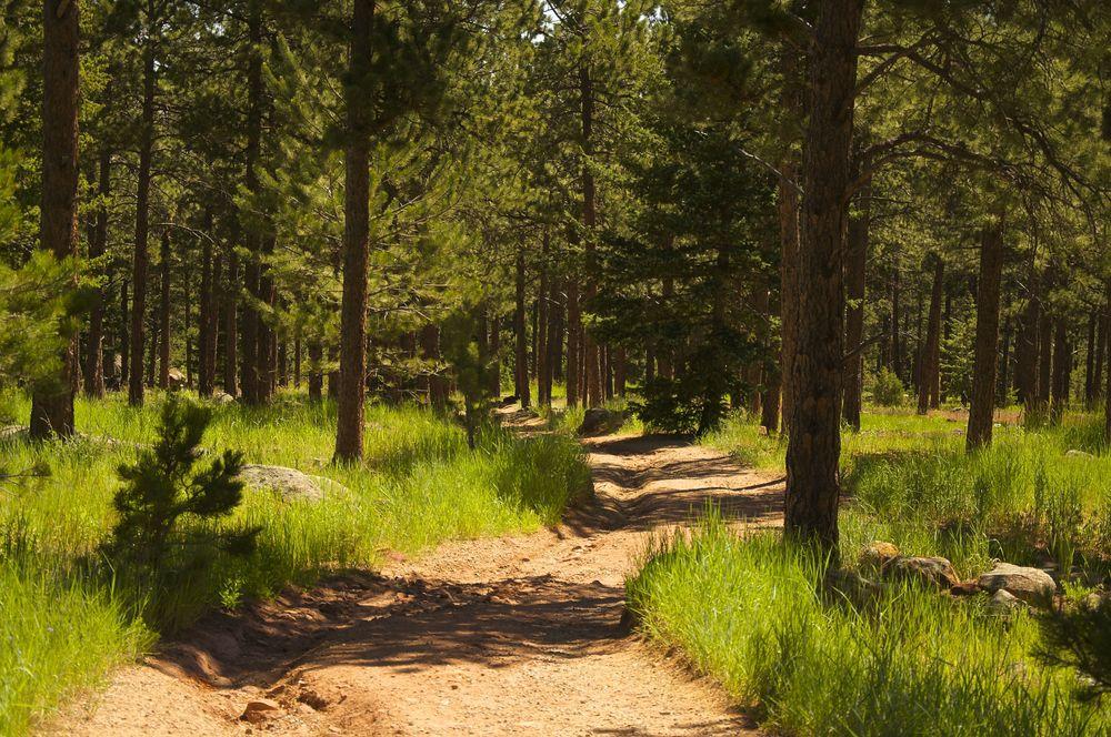 Shanahan Trail Boulder