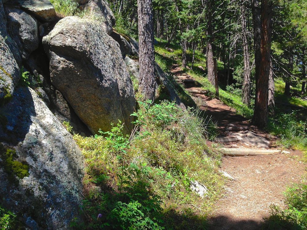 Boy Scout circles Flagstaff Summit's beautiful picnic spots