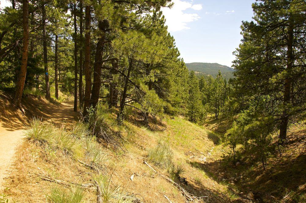 Betasso Canyon Trail