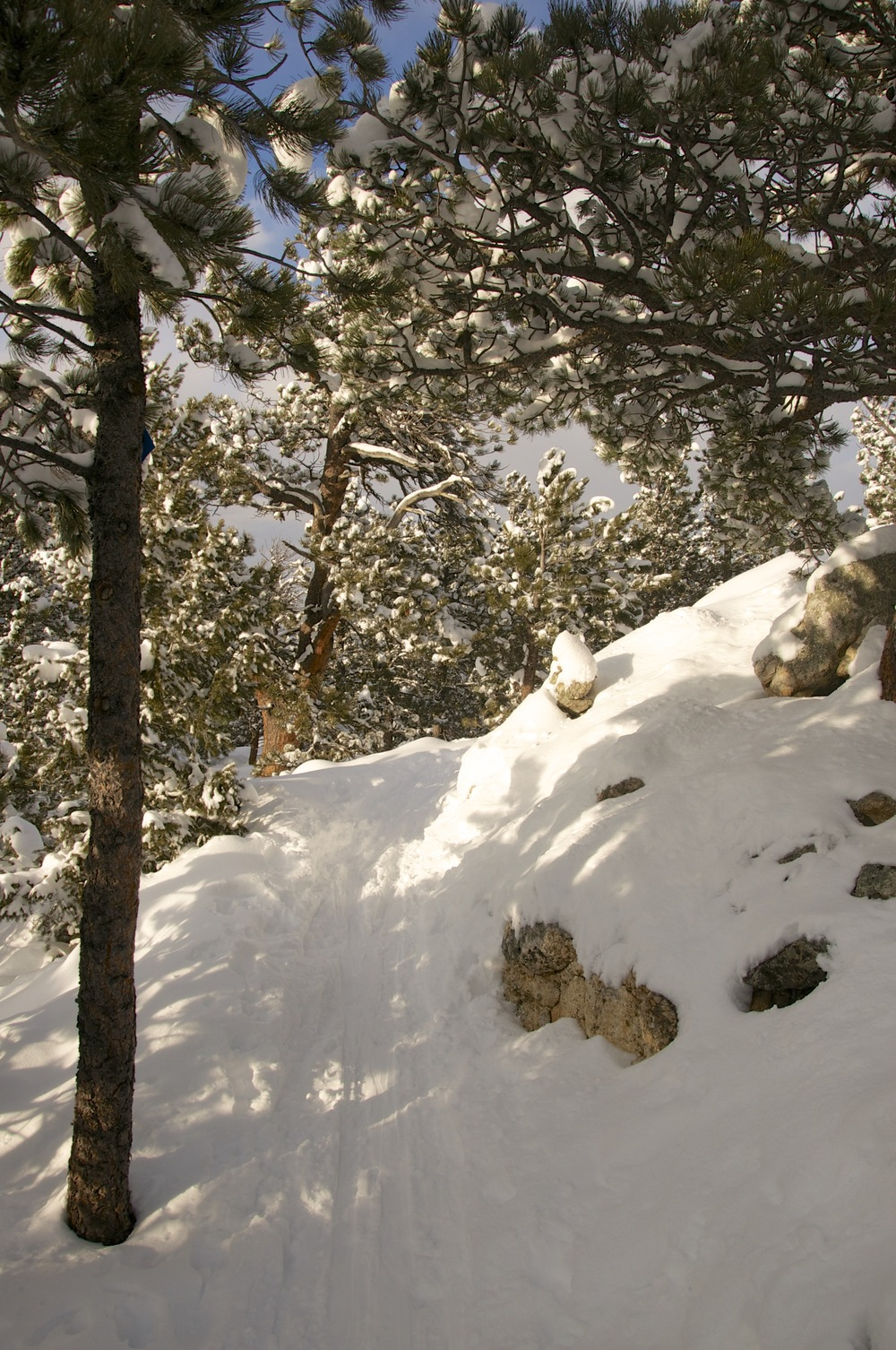Caribou Ranch Boulder