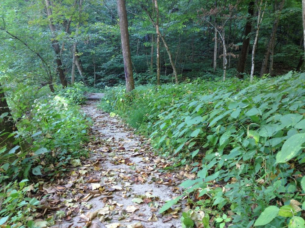 Minneopa State Park Hiking Club Trail.