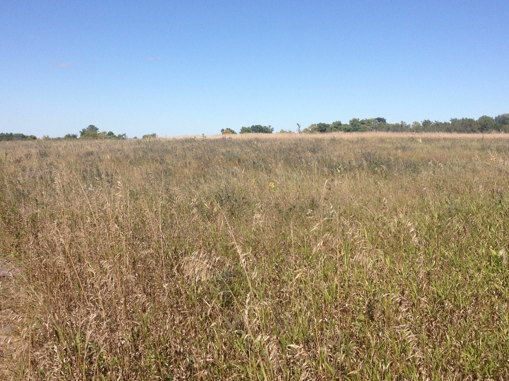 Prairie at Pipestone National Monument