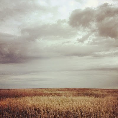 Prairie as far as the eye can see at Touch the Sky Prairie