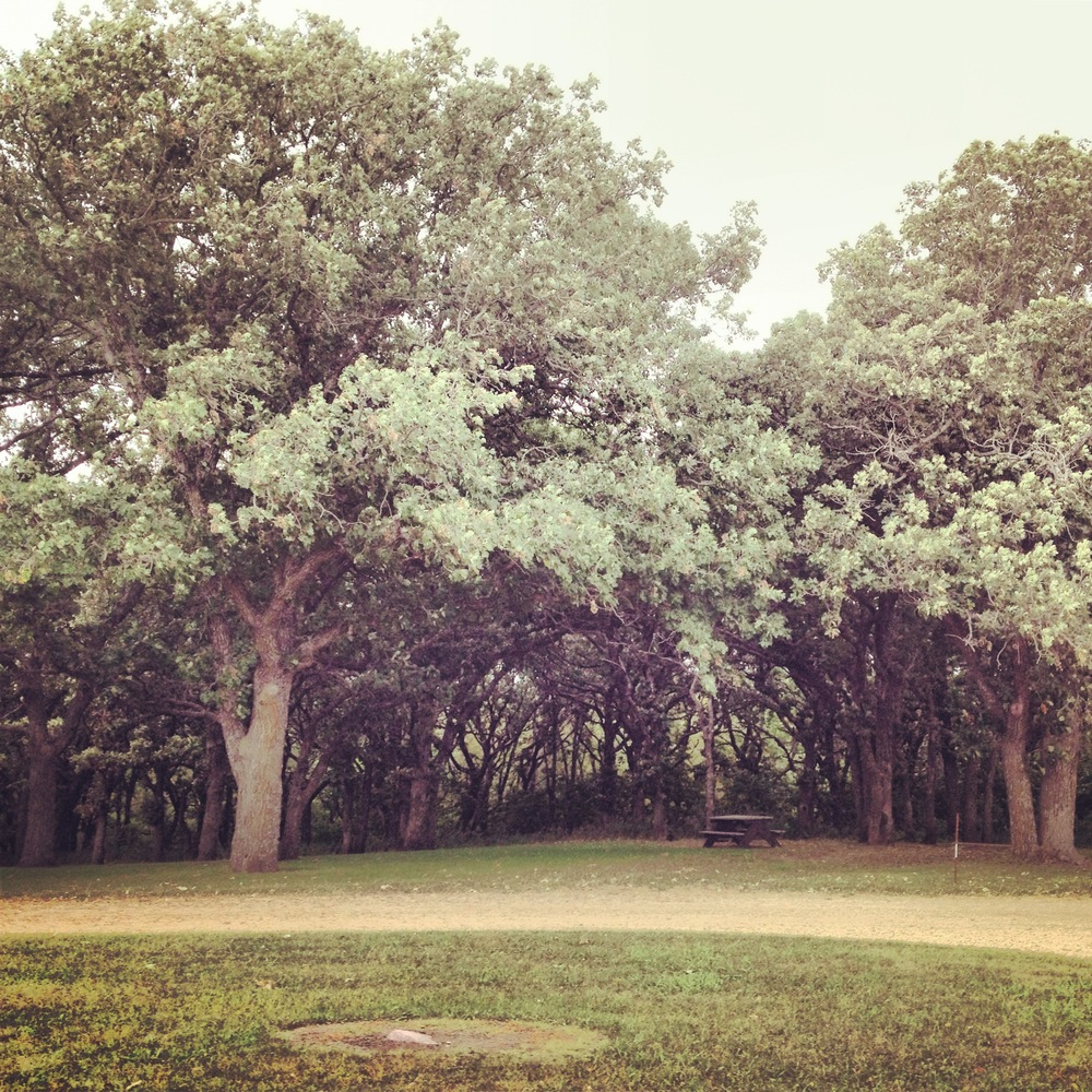 Oaks at Kilen Woods State Park