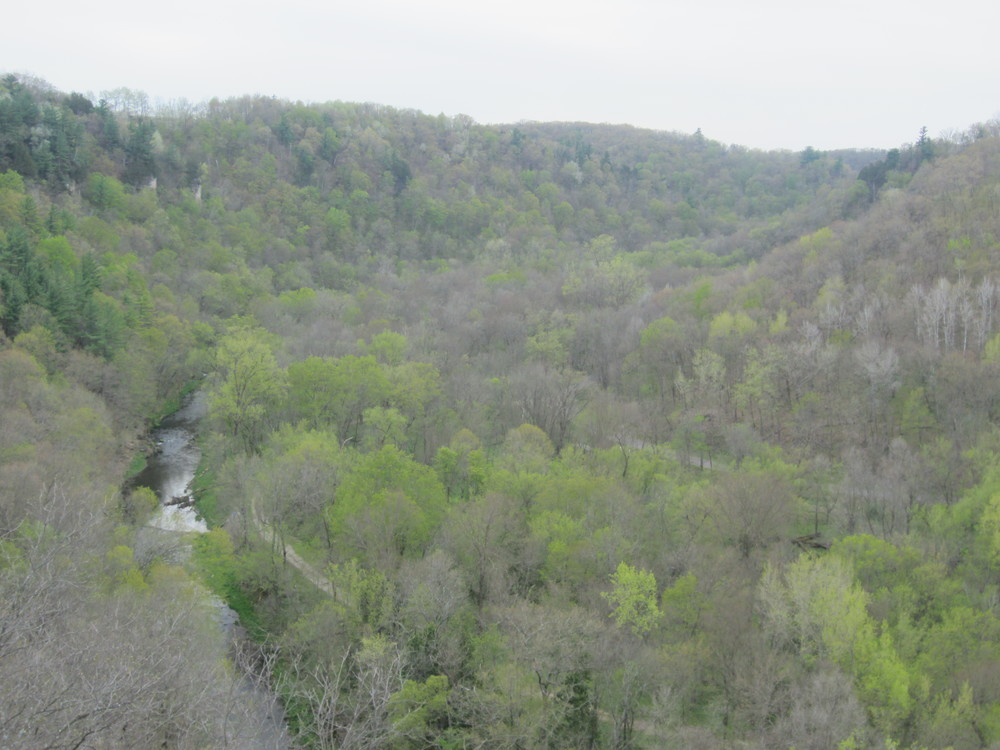 Overlook Scenery at Whitewater State Park