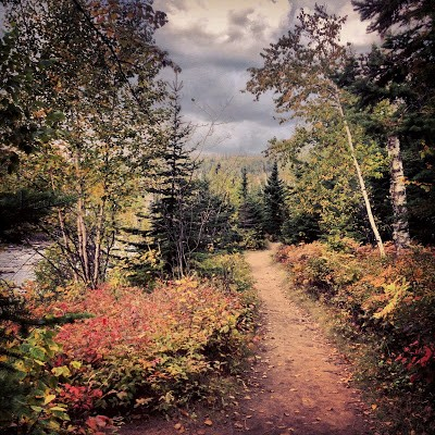 The trail winds through mixed birch-pine forests. Fall is an excellent time to visit Temperance River State Park