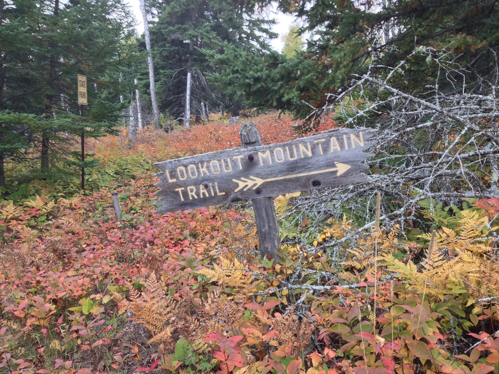 Follow the poorly marked trail at Cascade River State Park
