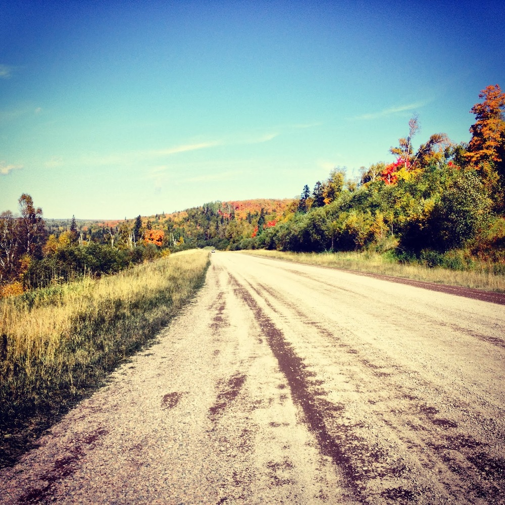 Dirt road through the fall colors in Superior National Forest.