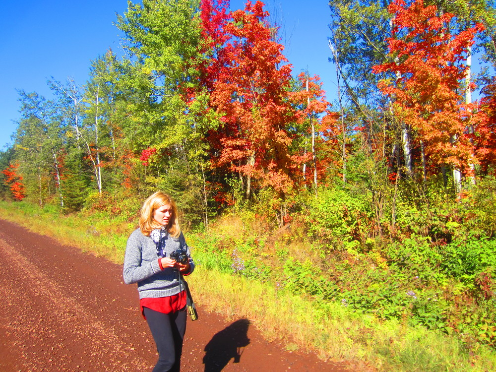 Fall Colors in Superior National Forest