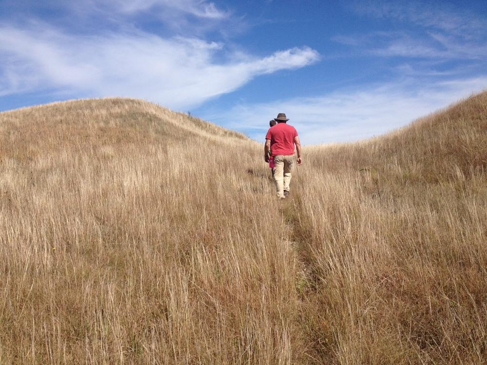 Hiking the Kames