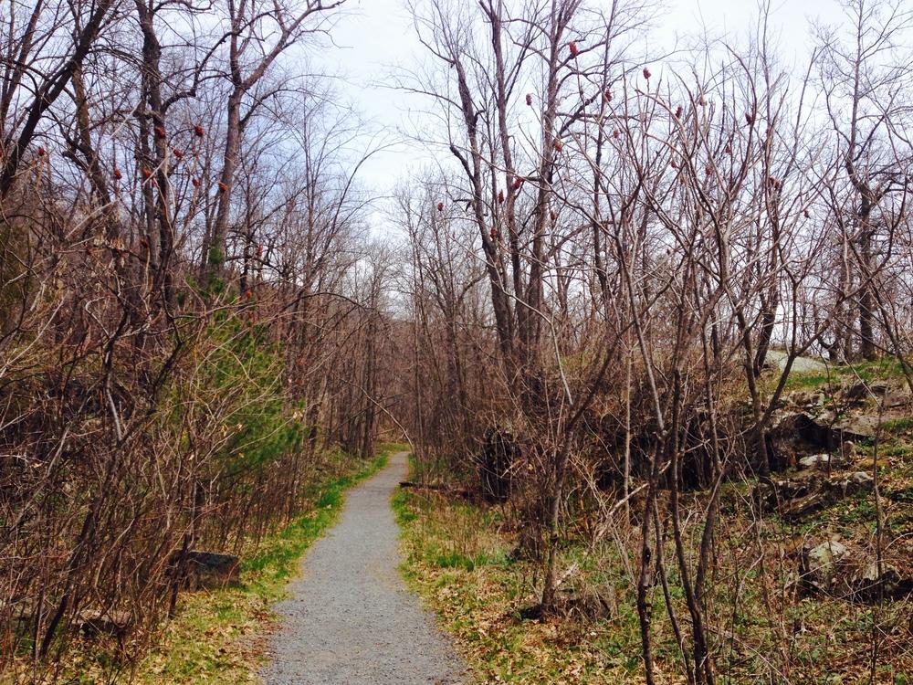 Minnesota Hiking Club Trail at Interstate State Park