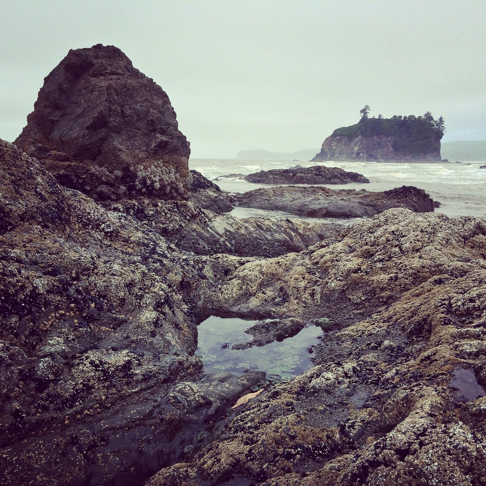 Ruby Beach tide pools and seastacks at Olympic National Park