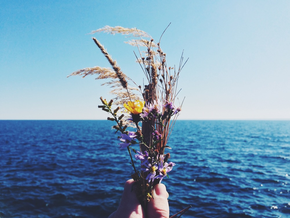Micro-Bouquet at Lake Superior