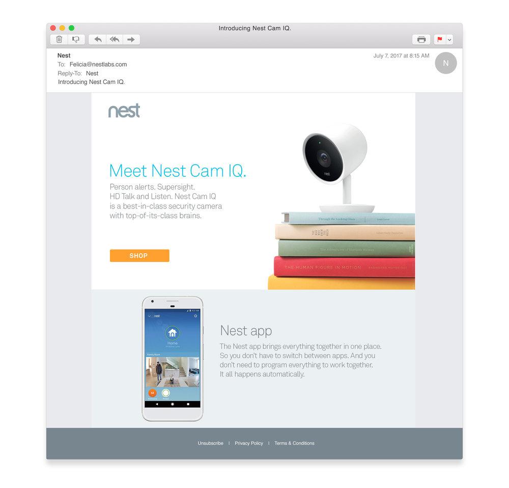 NestcamIQ_email_desktop.jpg