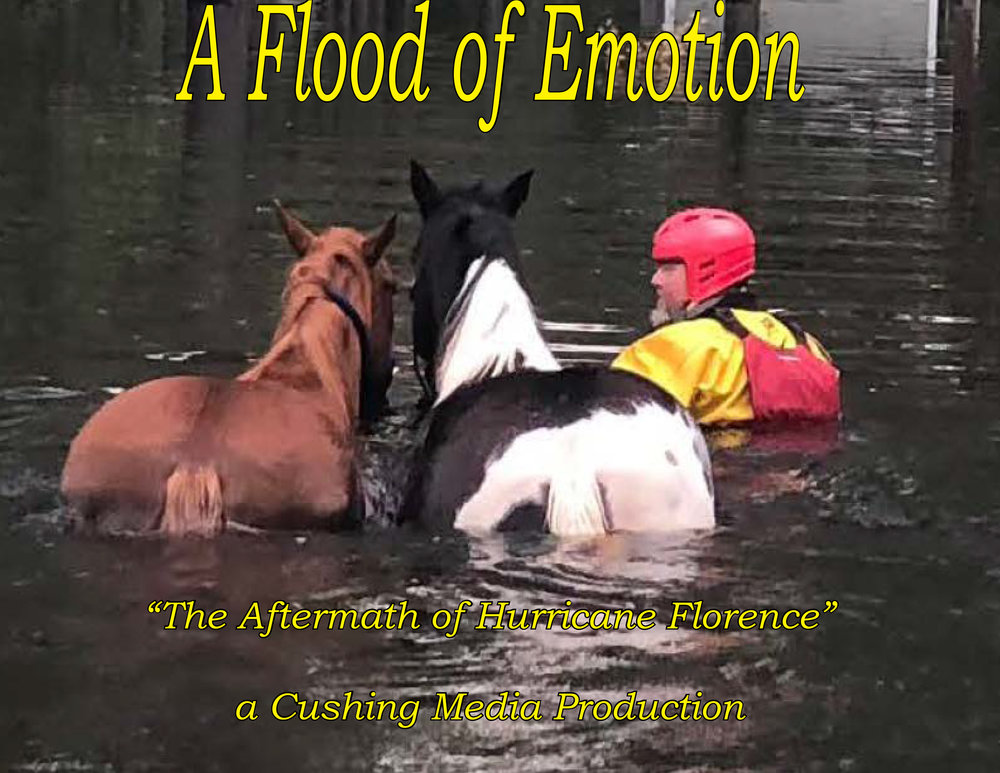 Flood of Emotion