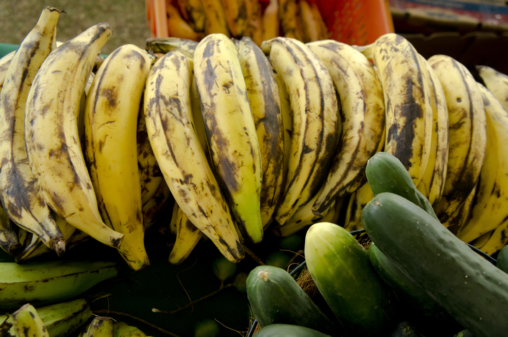 Puerto Rico farmers market, amaryllis, sweet plantains, ratatouille, Caribbean food. Easy vegetarian meal, healthy. How to cook sweet plantains.  How to buy sweet plantains.