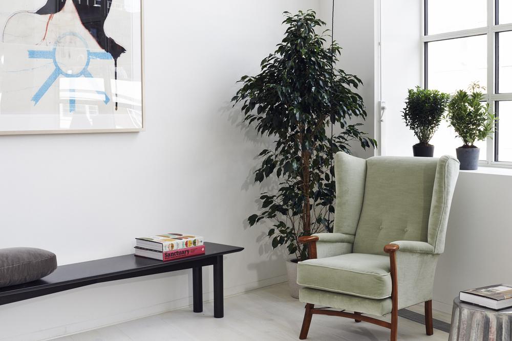Living room 5 .jpg
